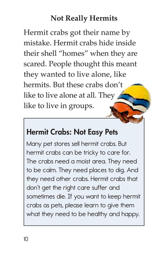 Book Preview For Hermit Crabs Page 10