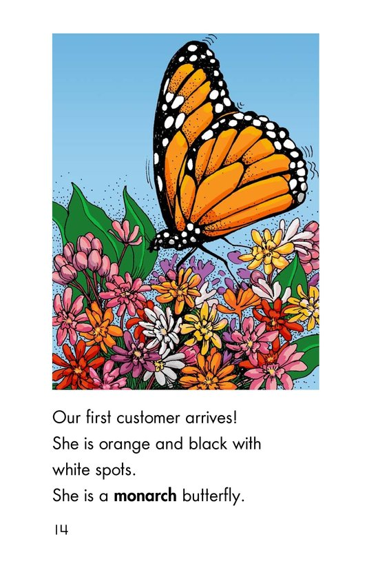 Book Preview For Butterfly Café Page 14
