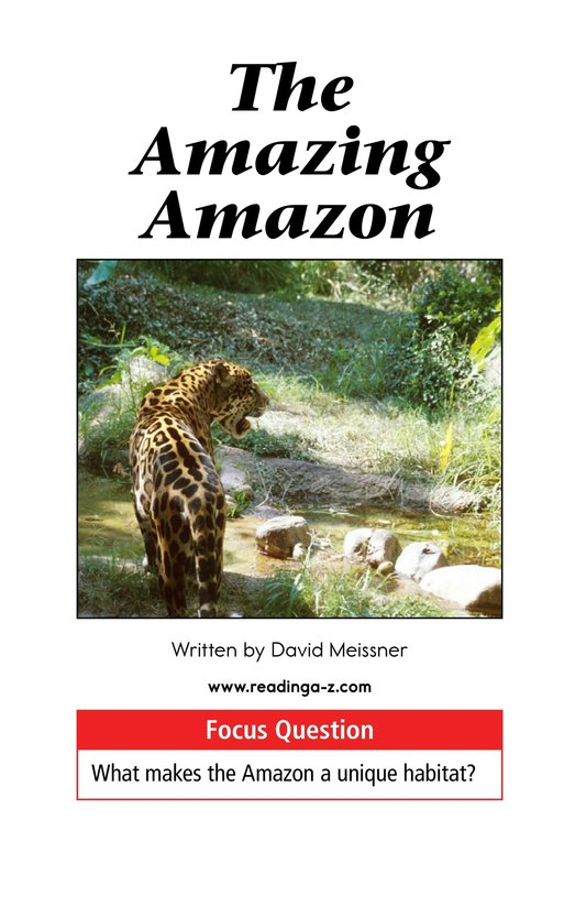 Book Preview For The Amazing Amazon Page 1