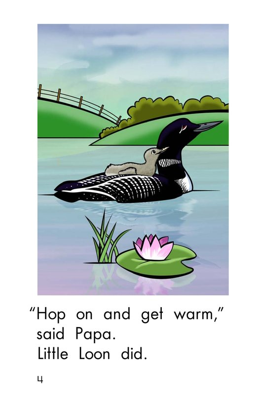 Book Preview For Little Loon Page 4