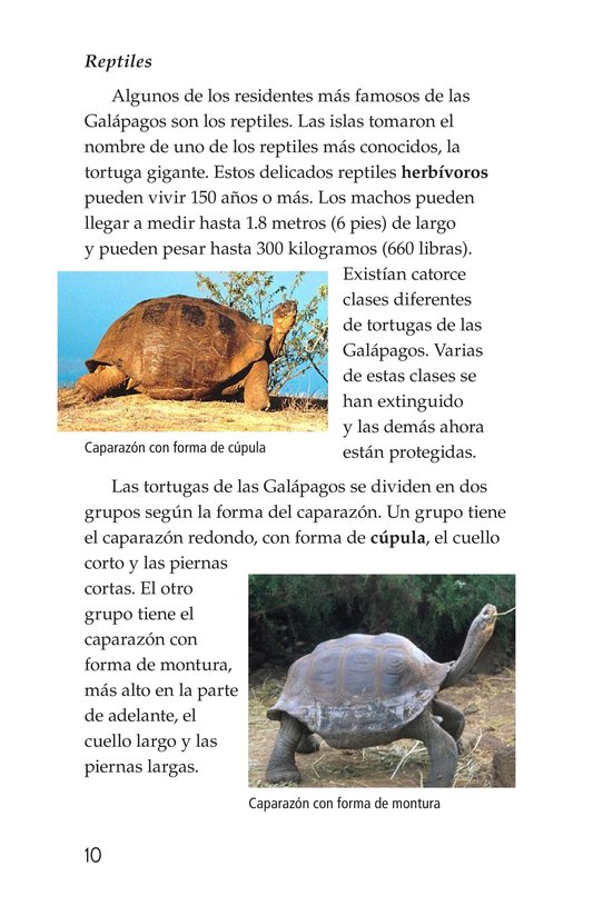 Book Preview For Galapagos Wonder Page 10