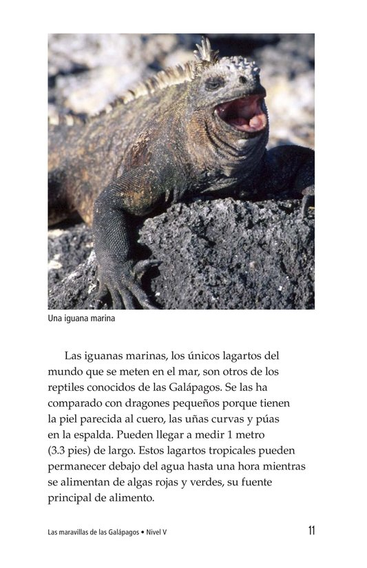 Book Preview For Galapagos Wonder Page 11