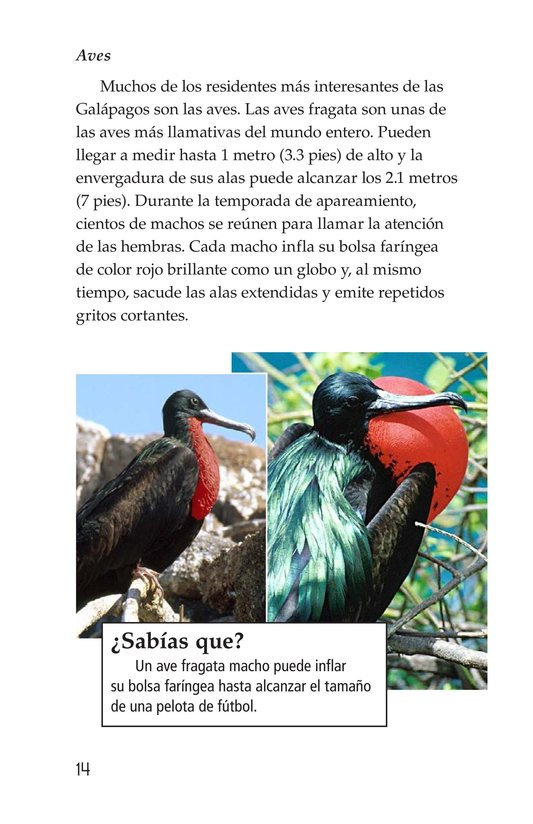 Book Preview For Galapagos Wonder Page 14
