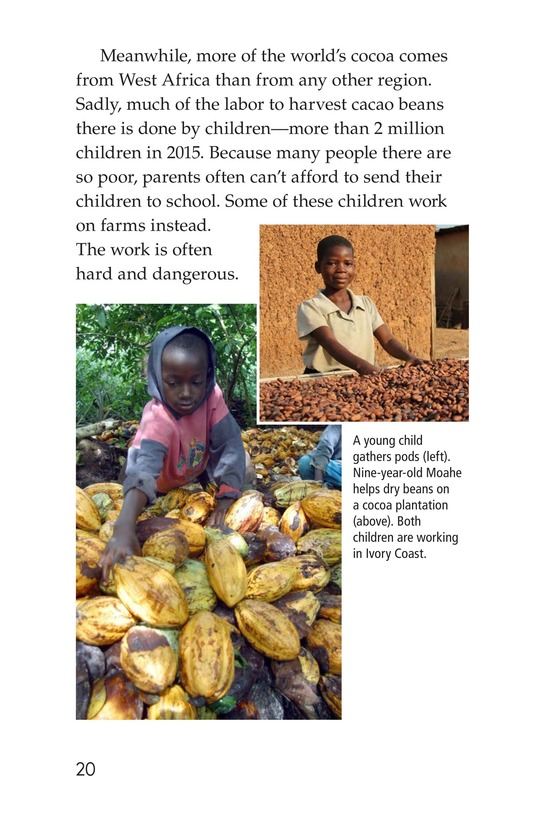 Book Preview For All About Chocolate Page 20