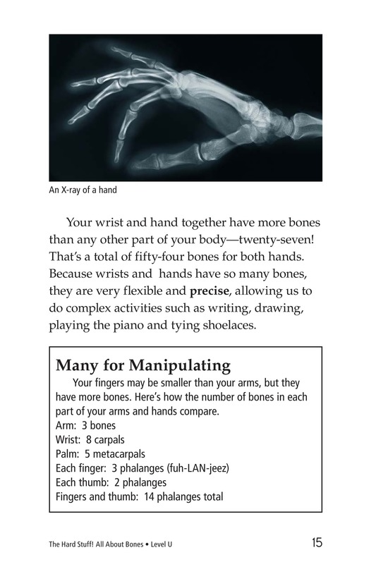Book Preview For The Hard Stuff! All About Bones Page 15