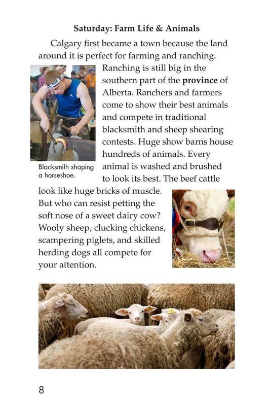 Book Preview For The Calgary Stampede Page 8