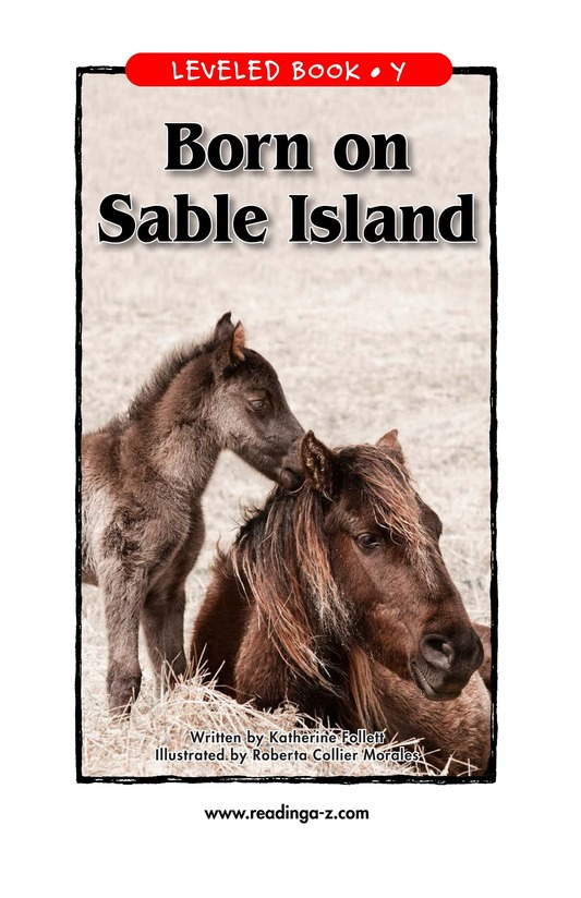 Book Preview For Born on Sable Island Page 1