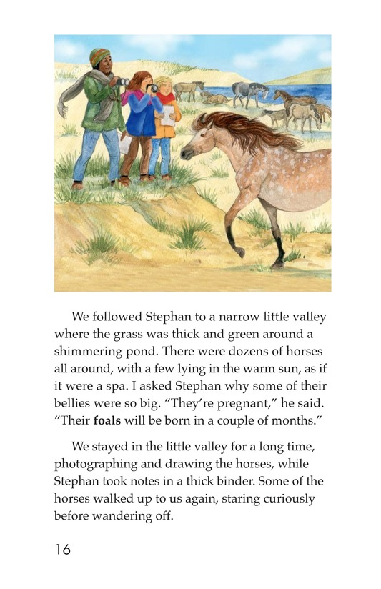 Book Preview For Born on Sable Island Page 16