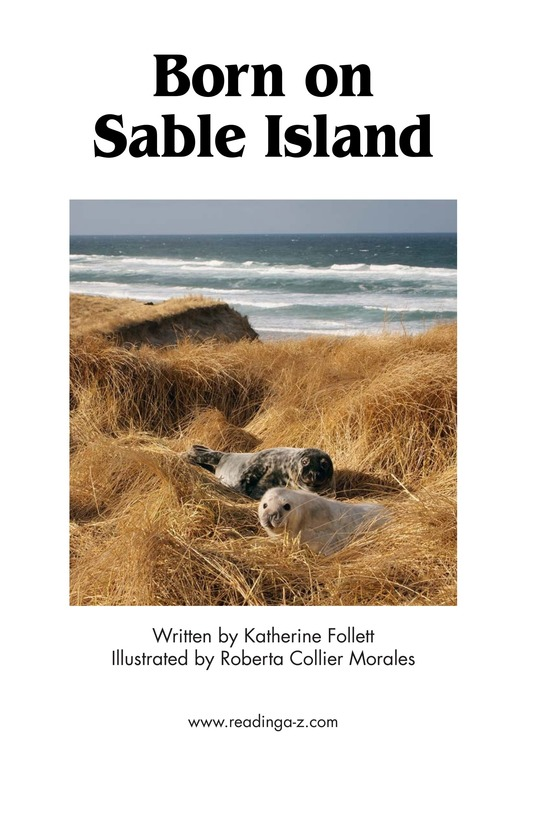 Book Preview For Born on Sable Island Page 2