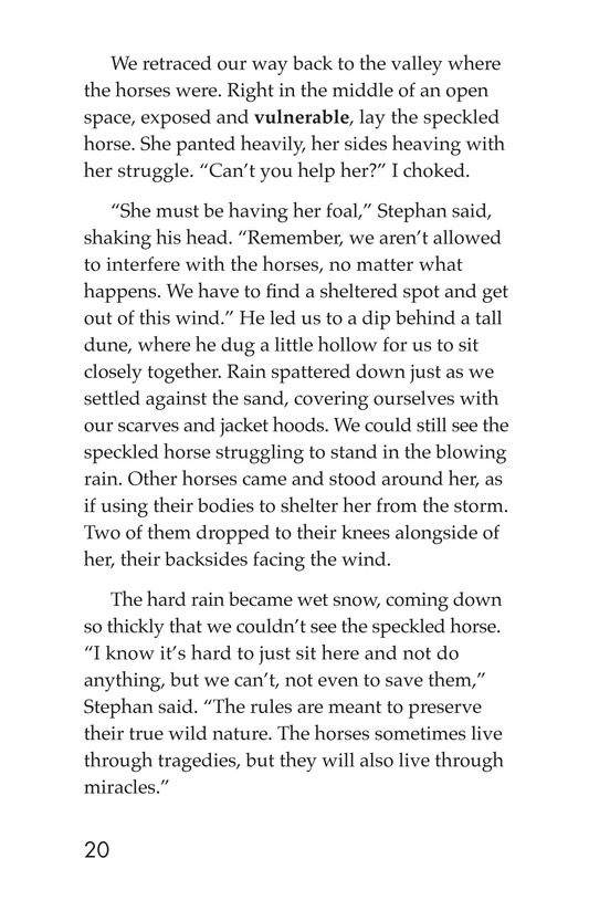 Book Preview For Born on Sable Island Page 20