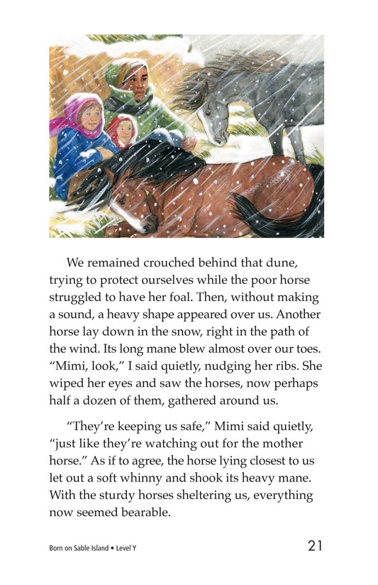 Book Preview For Born on Sable Island Page 21