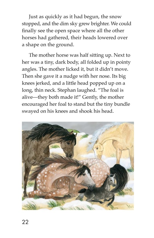 Book Preview For Born on Sable Island Page 22