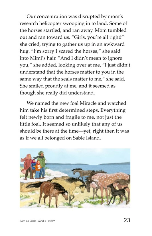 Book Preview For Born on Sable Island Page 23