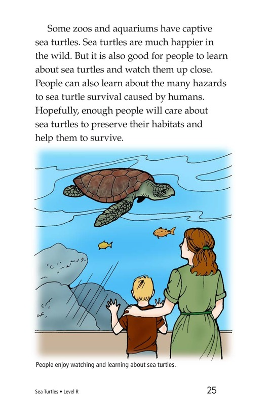 Book Preview For Sea Turtles Page 25