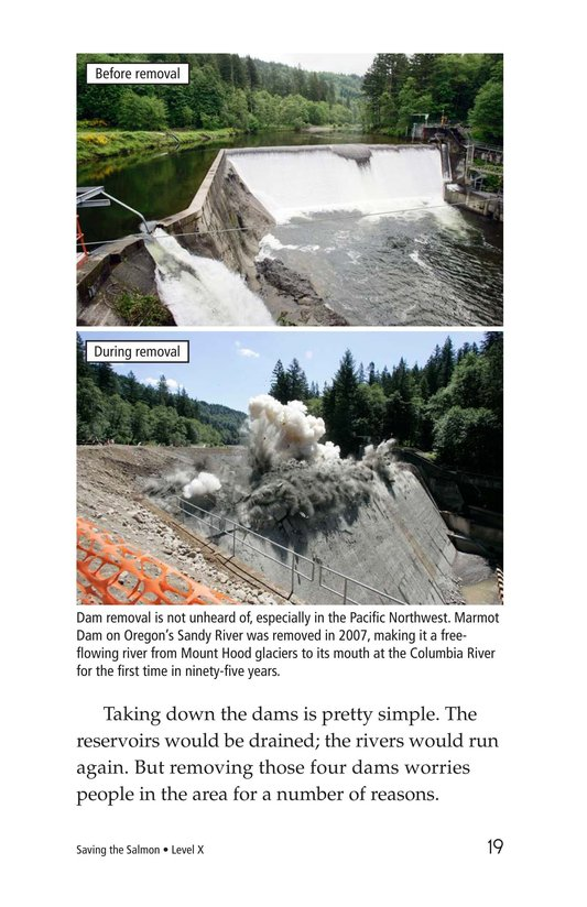Book Preview For Saving the Salmon Page 19