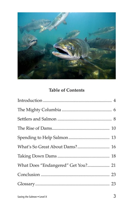 Book Preview For Saving the Salmon Page 3