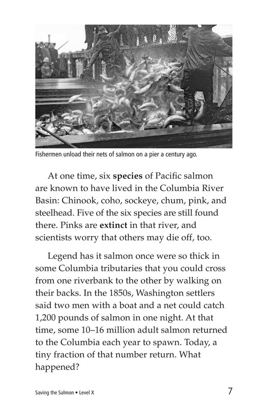 Book Preview For Saving the Salmon Page 7