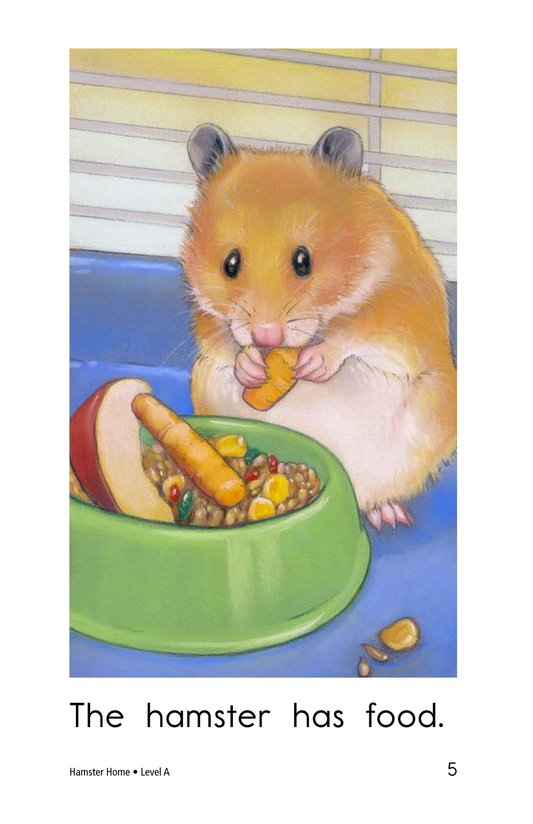 Book Preview For Hamster Home Page 5