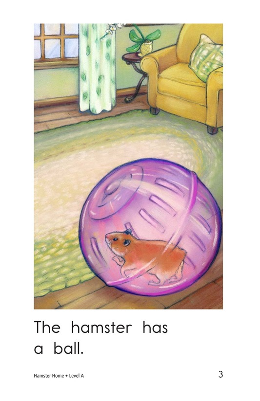 Book Preview For Hamster Home Page 3