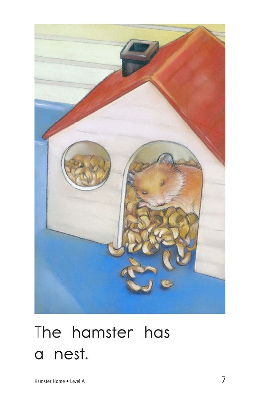 Book Preview For Hamster Home Page 7