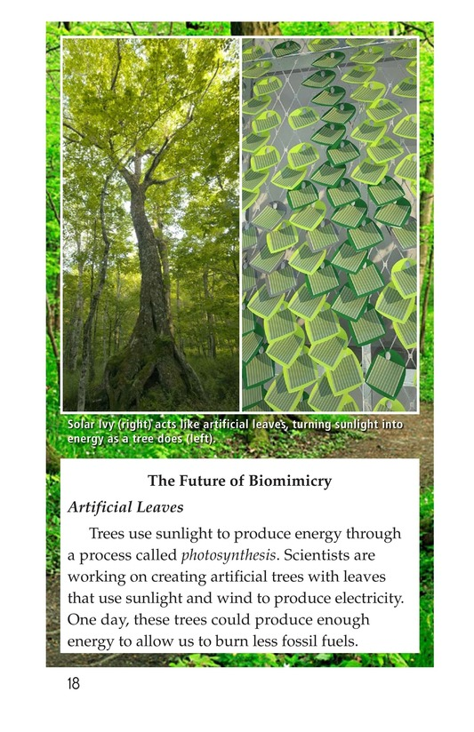 Book Preview For Biomimicry Page 18