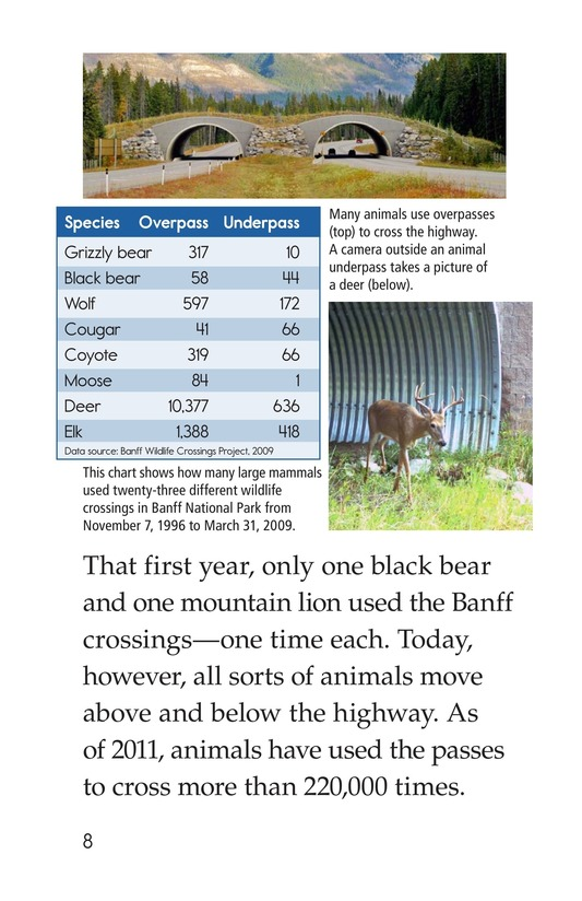 Book Preview For Critter Crossings Page 8