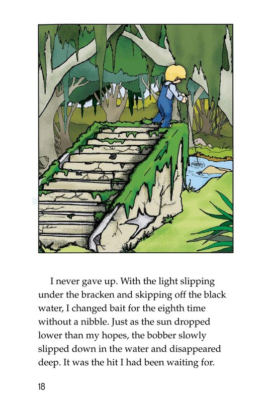 Book Preview For Fishing in Simplicity Page 18