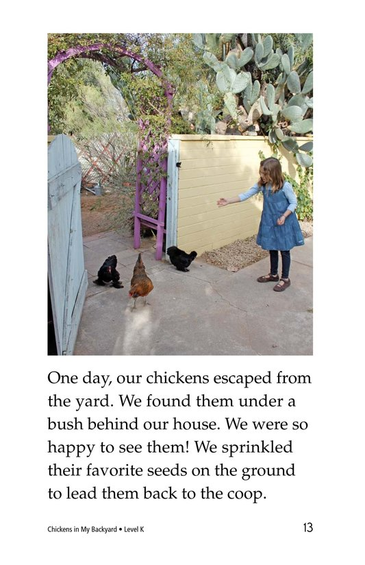 Book Preview For Chickens in My Backyard Page 13