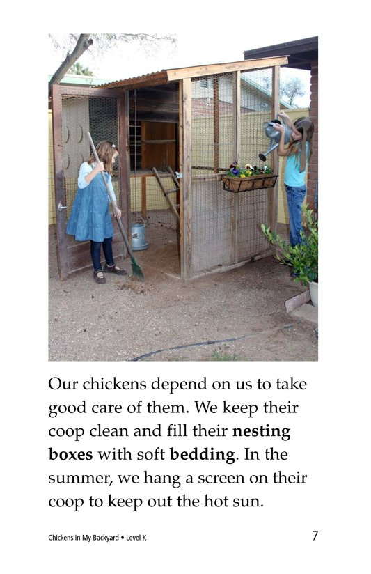 Book Preview For Chickens in My Backyard Page 7