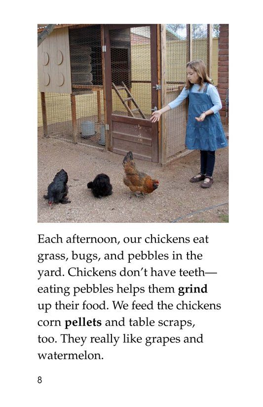 Book Preview For Chickens in My Backyard Page 8