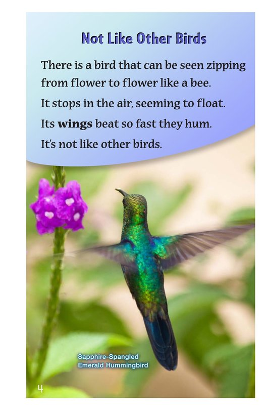 Book Preview For Hummingbirds Page 4