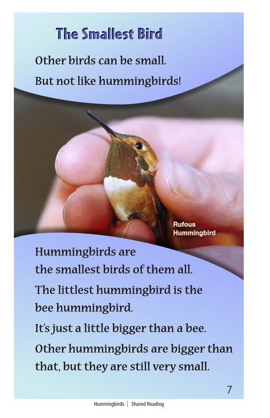Book Preview For Hummingbirds Page 7