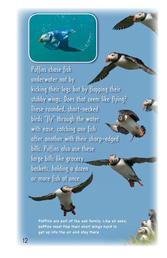 Book Preview For Winged Fishers Page 12
