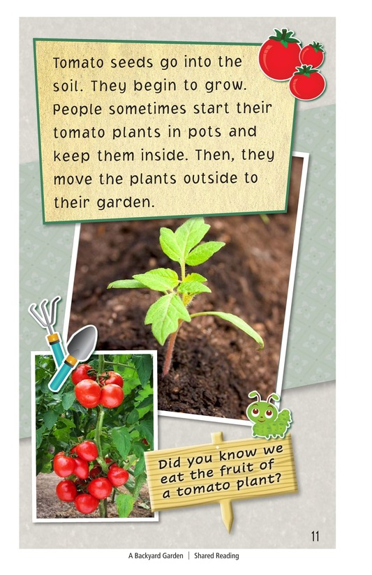 Book Preview For A Backyard Garden Page 11