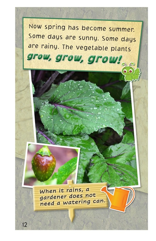 Book Preview For A Backyard Garden Page 12