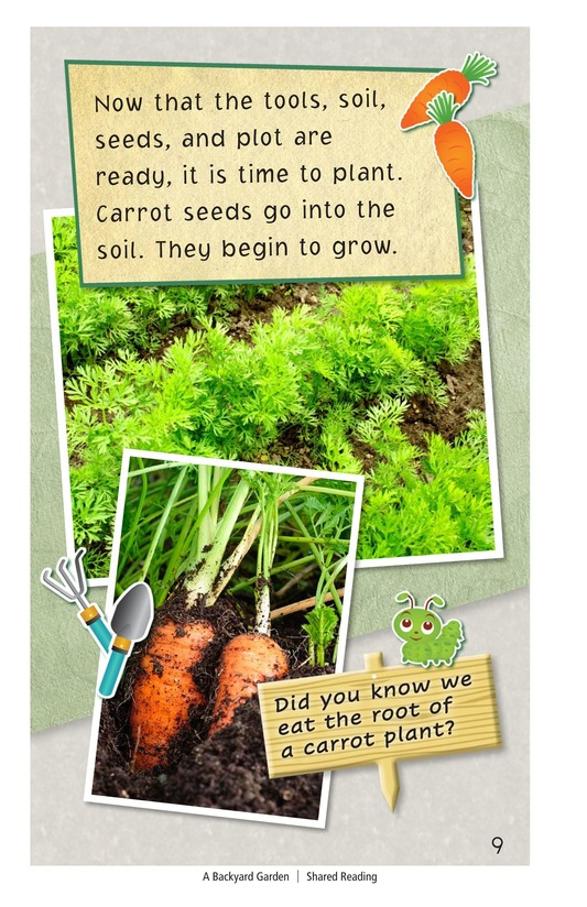 Book Preview For A Backyard Garden Page 9