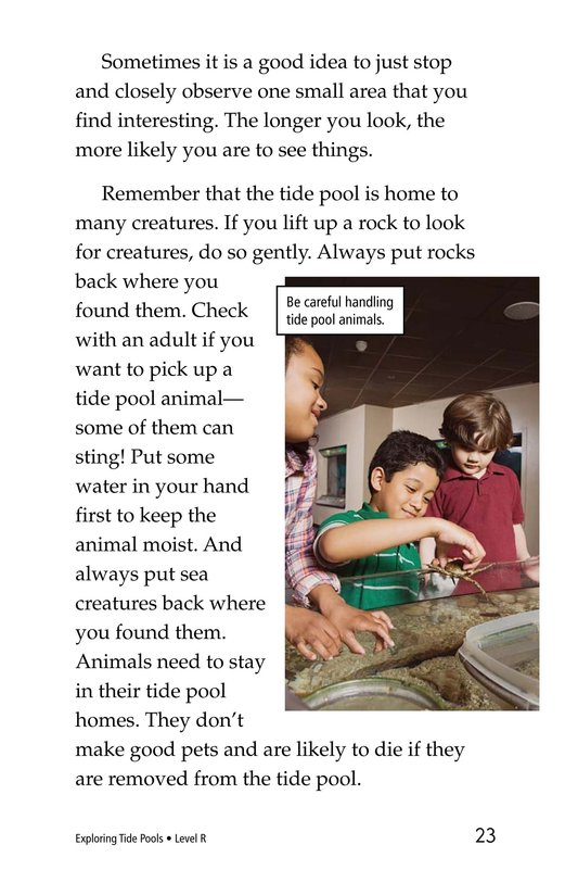 Book Preview For Exploring Tide Pools Page 23