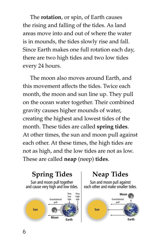 Book Preview For Exploring Tide Pools Page 6