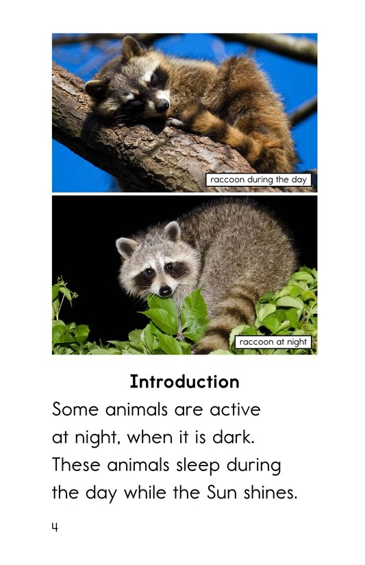 Book Preview For Night Animals Page 4