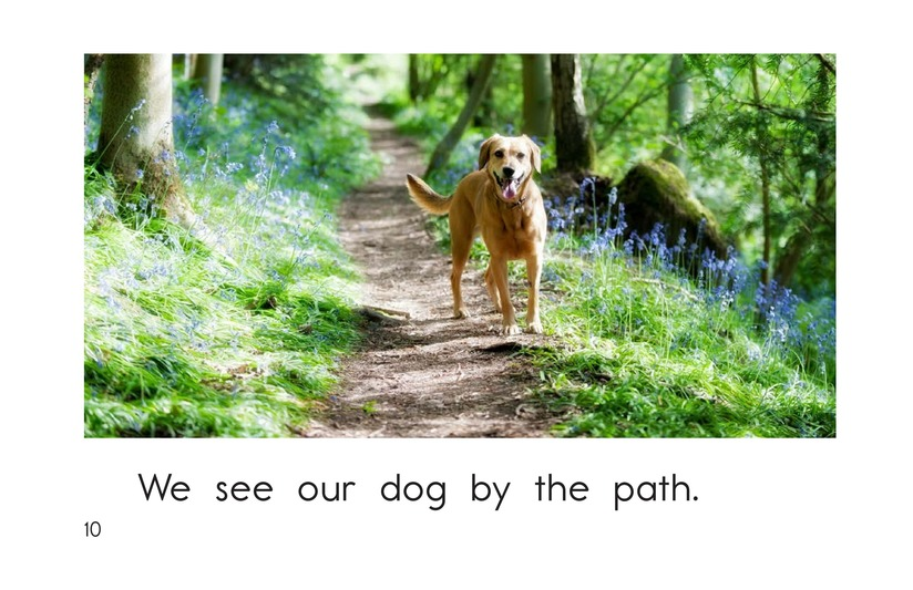 Book Preview For The New Forest Path Page 10