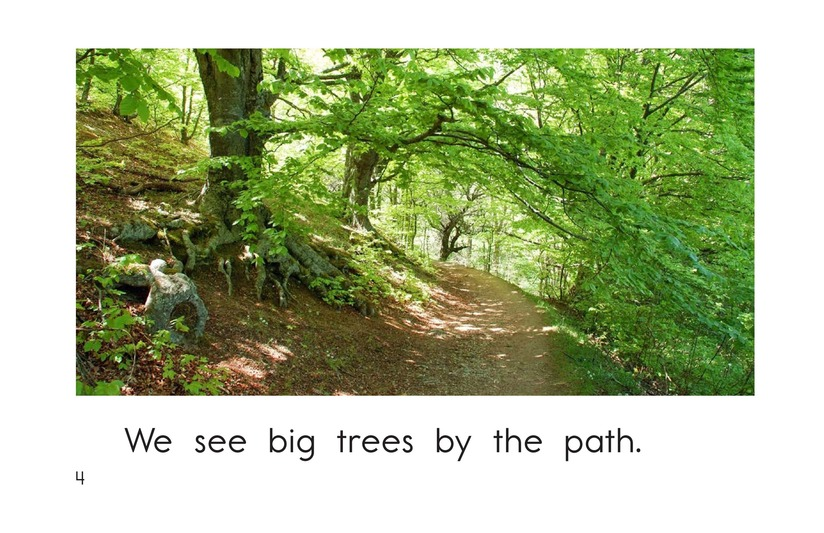 Book Preview For The New Forest Path Page 4