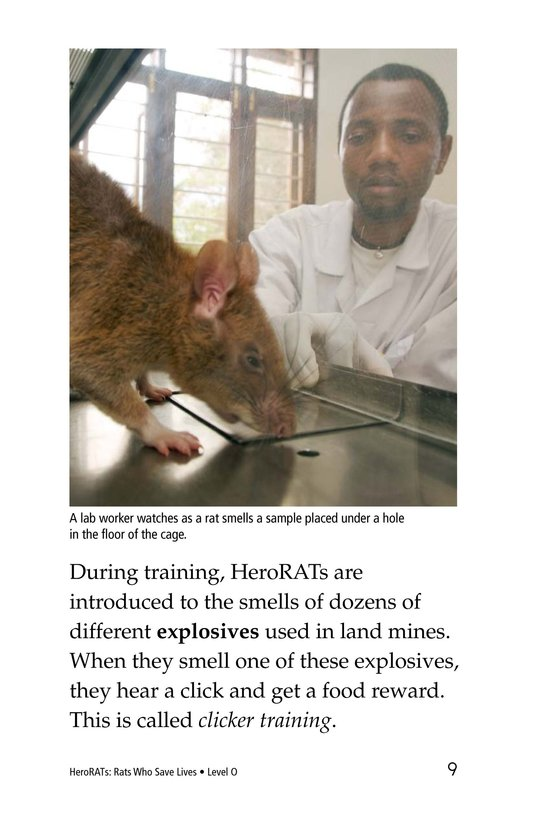 Book Preview For HeroRATs: Rats Who Save Lives Page 9