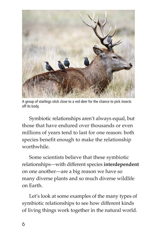 Book Preview For Symbiotic Wildlife Page 6