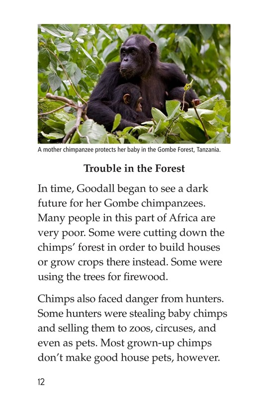 Book Preview For Jane Goodall Page 12