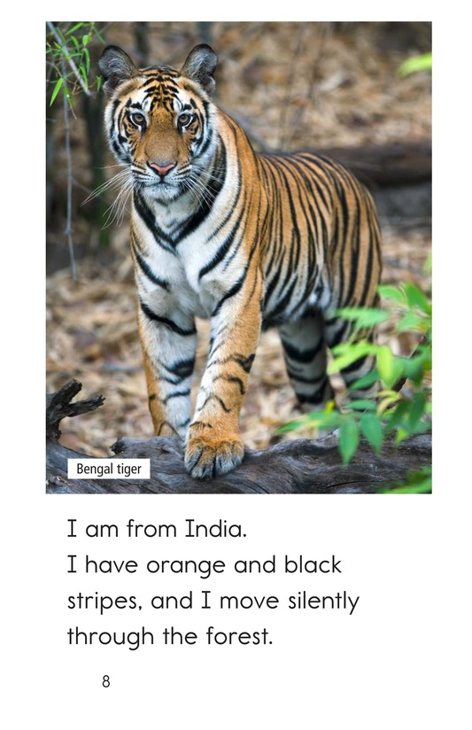 Book Preview For Are You From India? Page 8