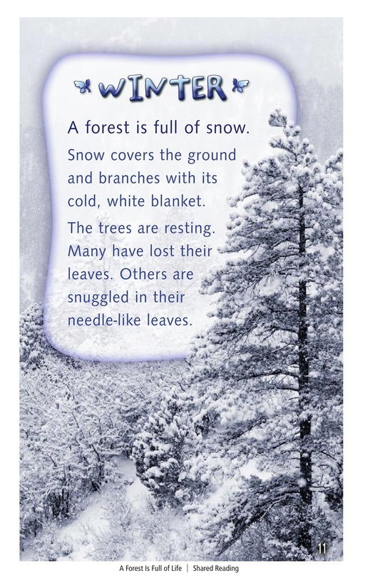Book Preview For A Forest Is Full of Life Page 11