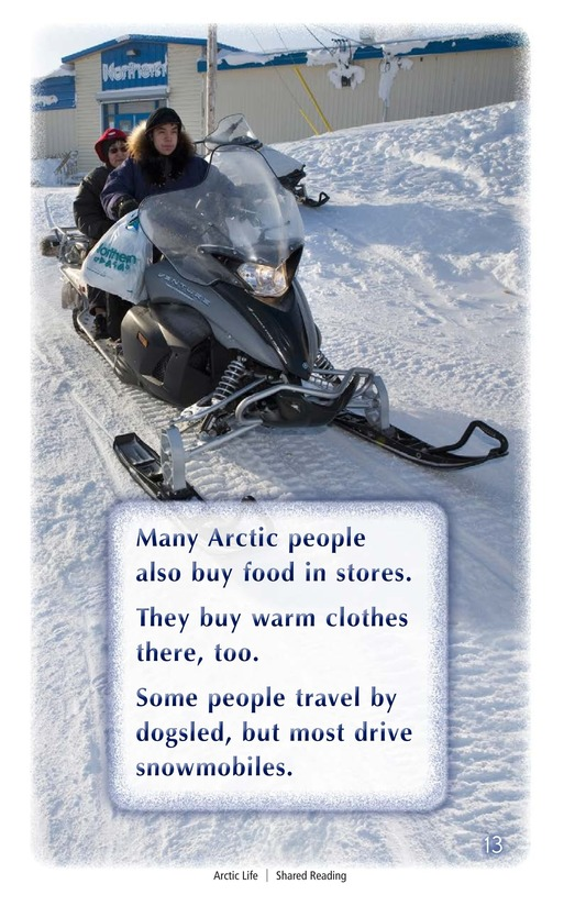 Book Preview For Arctic Life Page 13