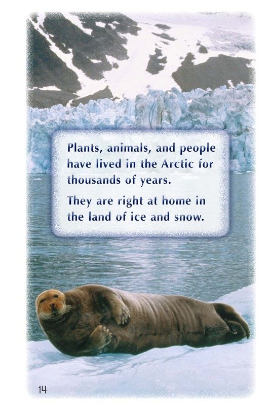 Book Preview For Arctic Life Page 14