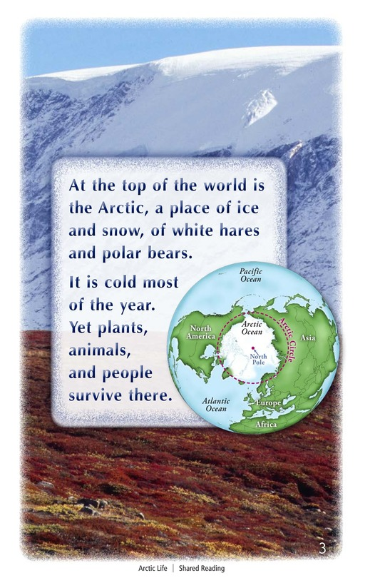 Book Preview For Arctic Life Page 3