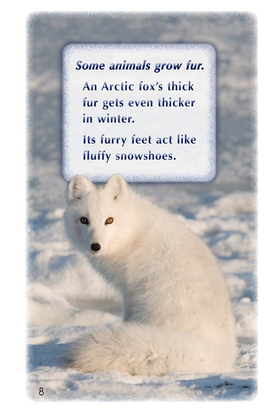 Book Preview For Arctic Life Page 8